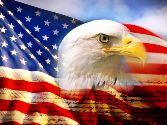 American eagle and flag image